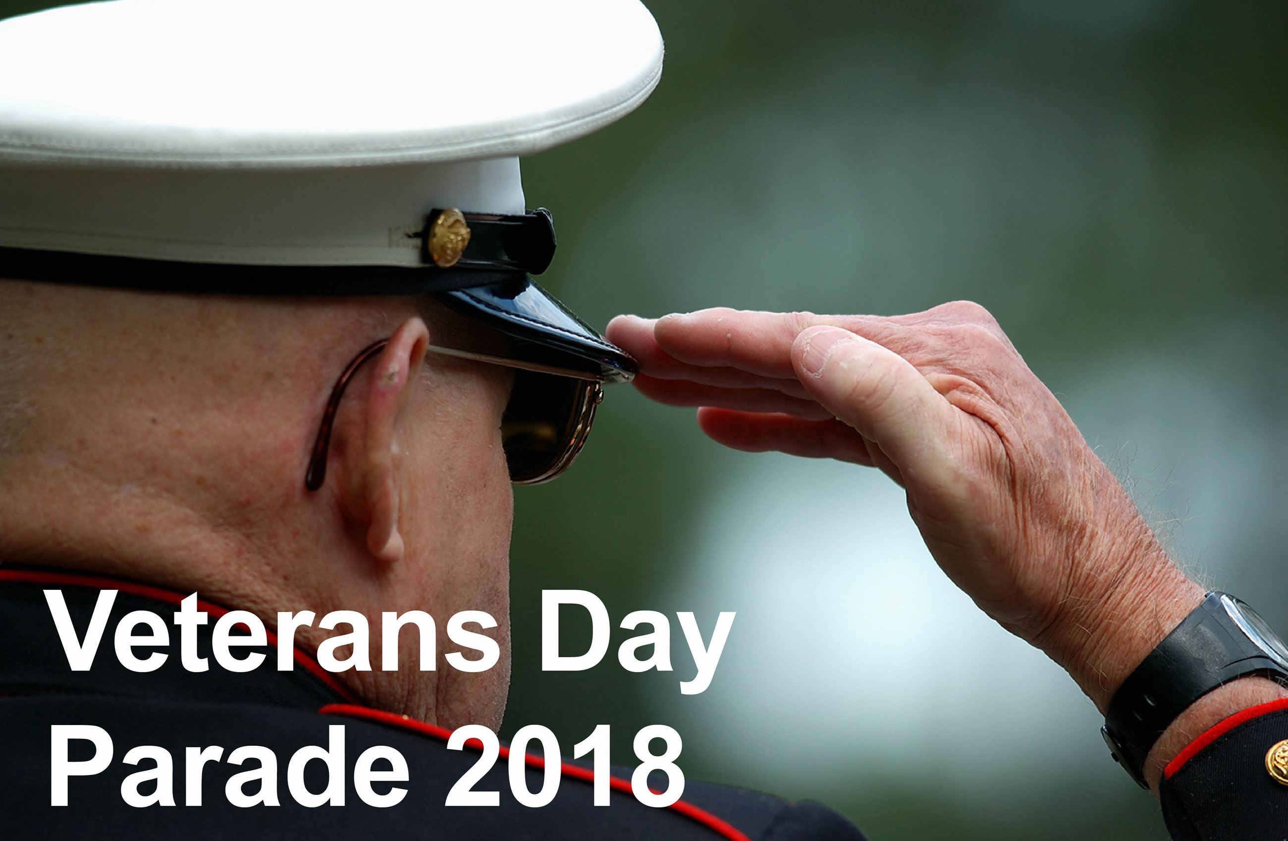 Veterans Day Parade Event Image